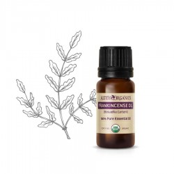 Organic Fankincense Oil